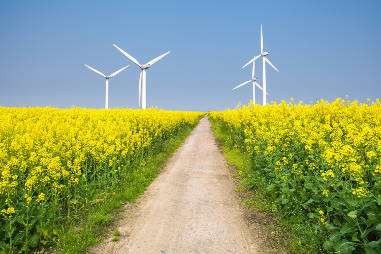 bigstock-Clean-Energy-In-The-Spring-86853404