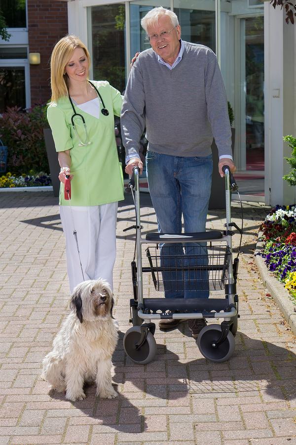 Nurse Helping Man With Walker Take Dog For Walk