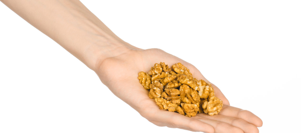 Nuts and cooking theme: man's hand holding a fresh peeled walnuts isolated on a white background