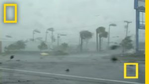 Irma10